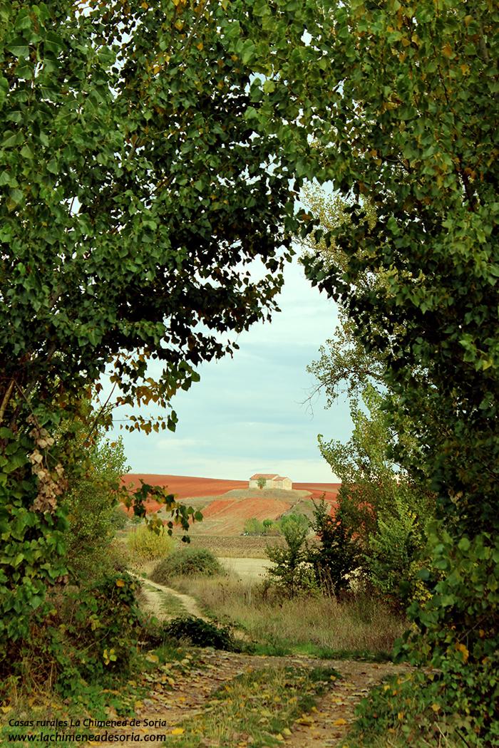 ermita románica de nuestra señora de la concepción Guijosa soria