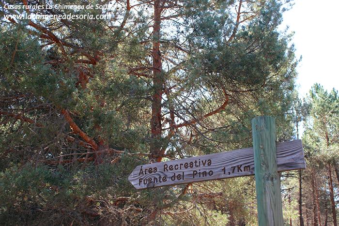 cruce fuente del pino parque natural del cañón del río lobos