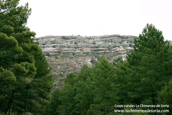 cabeza aro parque natural del cañón del Río Lobos invierno