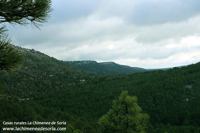 Sierra de Costalago Parque Natural del Cañón del Río Lobos