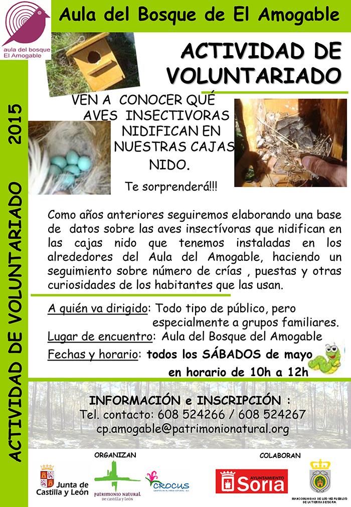 Voluntariado nidificación aves insectivoras casa del parque del Amogable