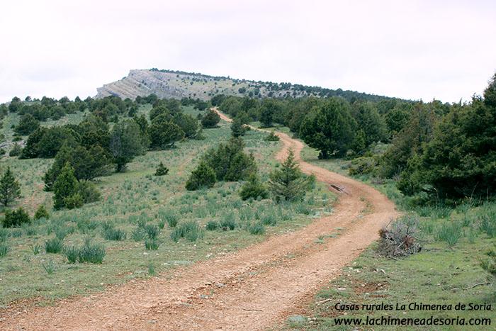 camino rural hacia el pico de navas parque natural canon del rio lobos