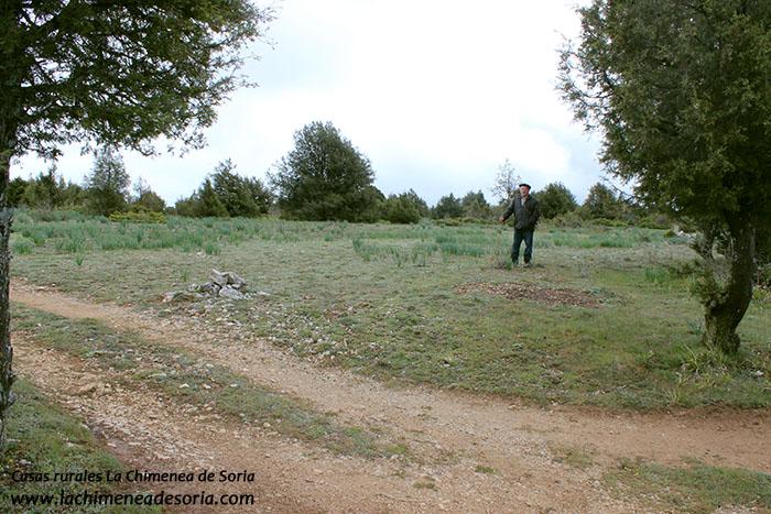 inicio camino rural de Espeja a Hontoria - frontera Soria Burgos
