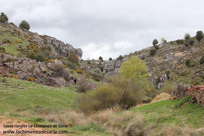 la mayor la menor y las cuevas de alcalá