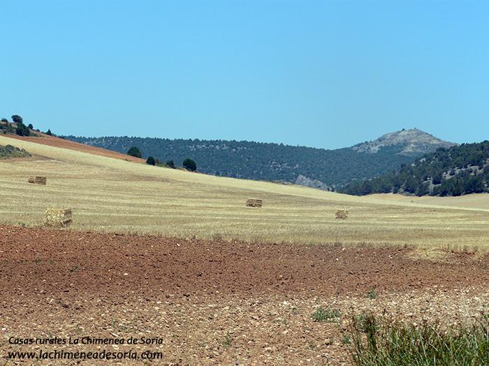 pico san asenjo y campos de castilla
