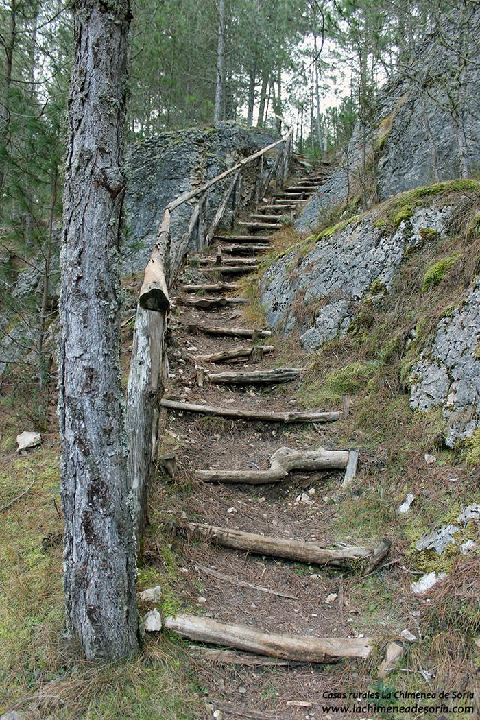 escalera madera natural cañón del rio lobos