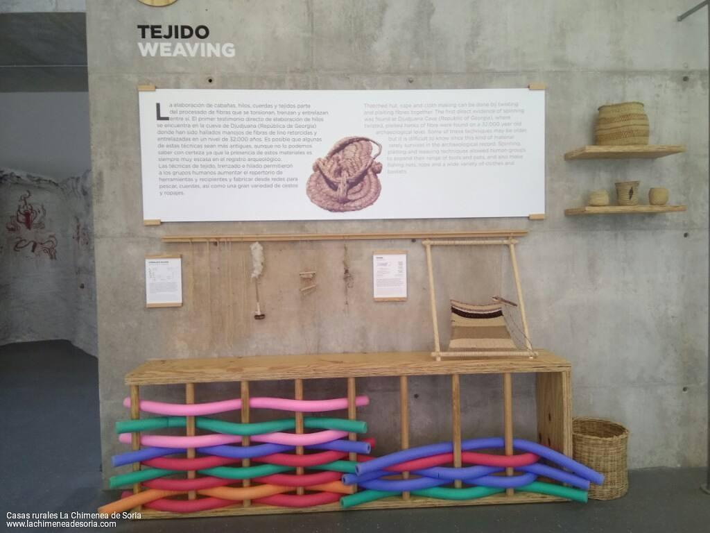 carex atapuerca exposicion centro de arte rupestre